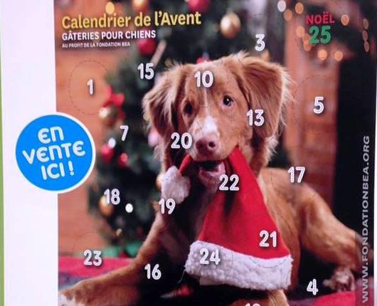 Calendrier de l 39 avent pour chiens h pital v t rinaire - Calendrier de l avent pour chien ...